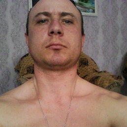 Алексей, 29 лет, Ташла