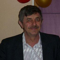 владимир, 66 лет, Каменногорск