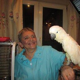 Инга, 56 лет, Лосино-Петровский