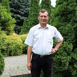 Фото Анатолий, Днепропетровск, 62 года - добавлено 27 декабря 2017