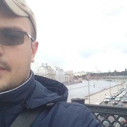 Терри, , Новомосковск