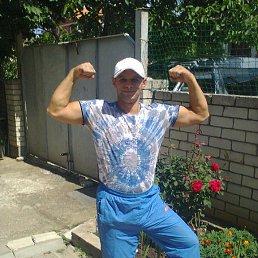 Александр, 40 лет, Белореченск