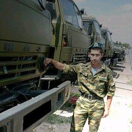 Михаил, 34 года, Усть-Луга