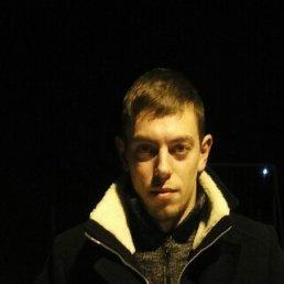 Дмитрий, 29 лет, Коломна-1