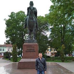 Дима, 41 год, Котовск