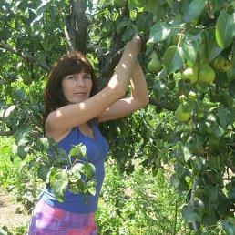 Татьяна, 54 года, Тирасполь
