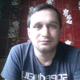 дмитрий, 44 года, Коноша