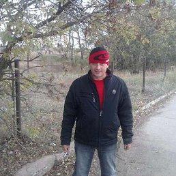Александр Тисленко, 35 лет, Приморск