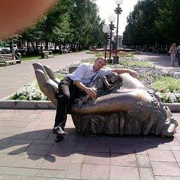 Сергей, 41 год, Каменка