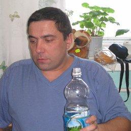 сергей, 44 года, Вербилки