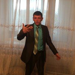 Коля, 25 лет, Камень-Каширский