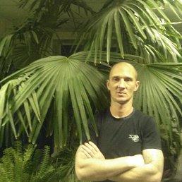 Евгений, 40 лет, Камень-на-Оби