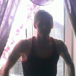 Иван, 28 лет, Североморск 3