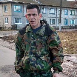 сергей, 40 лет, Одоев