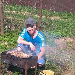 Серёга, 43 года, Сергиев Посад