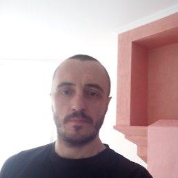 Олег, 37 лет, Малин