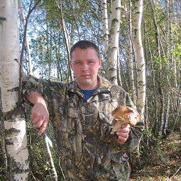 Николай, 33 года, Семибратово