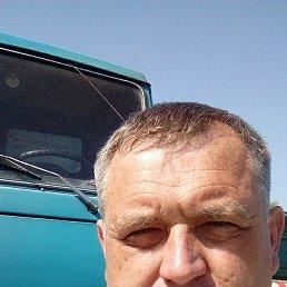 Анатолий, 45 лет, Изяслав