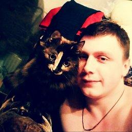 Максим, 28 лет, Заволжье