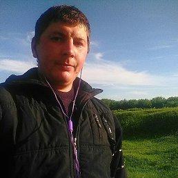 Сергей, 28 лет, Новопокровка