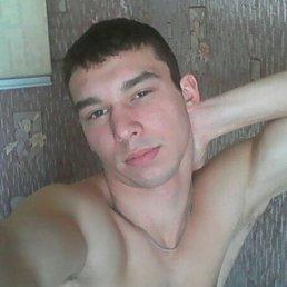Bars, 24 года, Архангельск