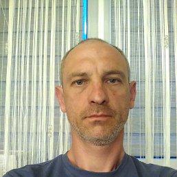 Сергей, 44 года, Гродно