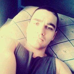 Дмитрий, 27 лет, Дебальцево