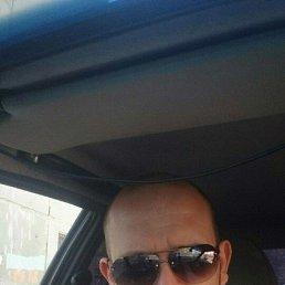 Павел, 32 года, Клин