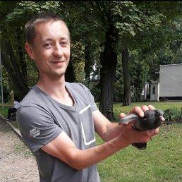 Андрій, 28 лет, Барановка