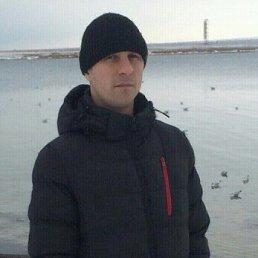 Дмитрий, 38 лет, Доброполье