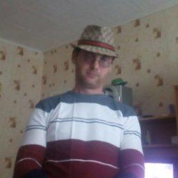 Андрей, 29 лет, Губаха