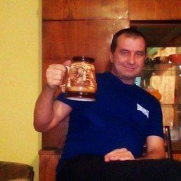 сергей, 47 лет, Кормовище