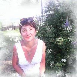 Таня Сотова, 49 лет, Черноголовка
