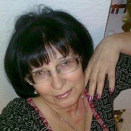Шмакова, 66 лет, Александрия