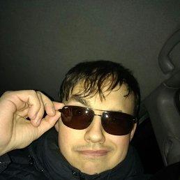 Илья, 28 лет, Голицыно