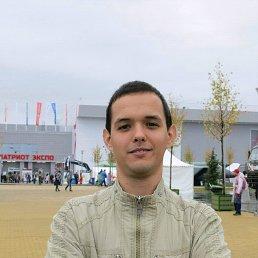 Сергей, 26 лет, Кашира