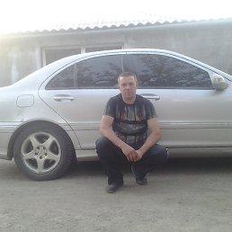 Виталий, 42 года, Баштанка