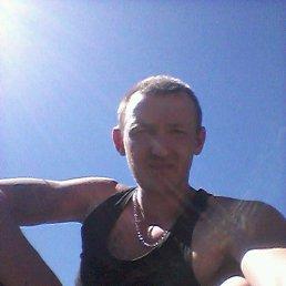 Владимир, 33 года, Городовиковск