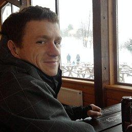 артур, 32 года, Никольское