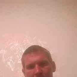 Дмитрий, 29 лет, Елань