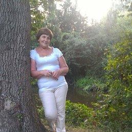 Галина, 63 года, Москва