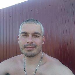 Василий, 36 лет, Ступино