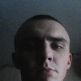 Артём, 24 года, Бронницы