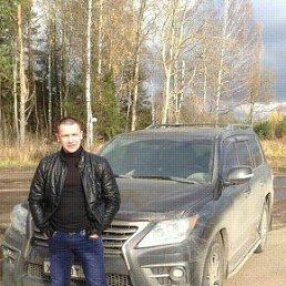 Димон, 34 года, Быково