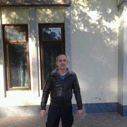 Олег, 41 год, Каменец-Подольский
