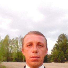 Роман, 42 года, Житомир