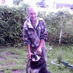 Борис, 60 лет, Гаврилов-Ям