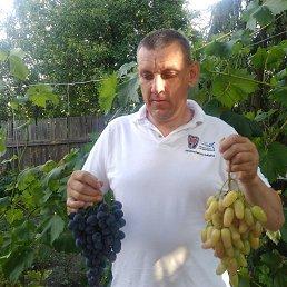 Андрей, 41 год, Дебальцево