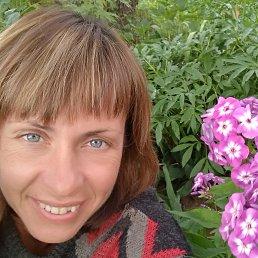 Елена, 44 года, Киров