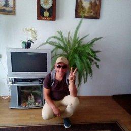 Анатолий, 48 лет, Стрый